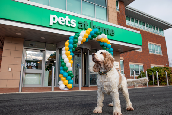 Pets at Home announce an interim dividend of per share of 2.5p, maintained with the prior year