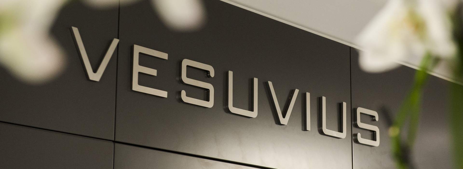 Vesuvius plc announce a full year dividend increased by 3.5% to 20.5 pence per share