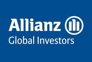 Brunner Investment Trust plc